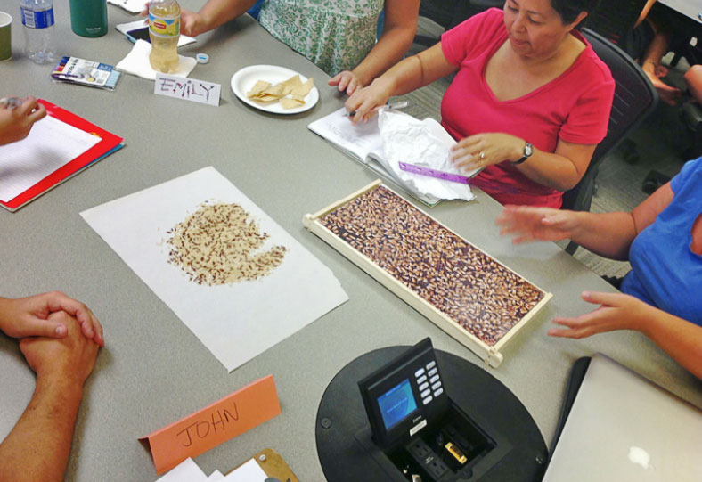 Teachers devise a method for estimating the number of bees in a hive.